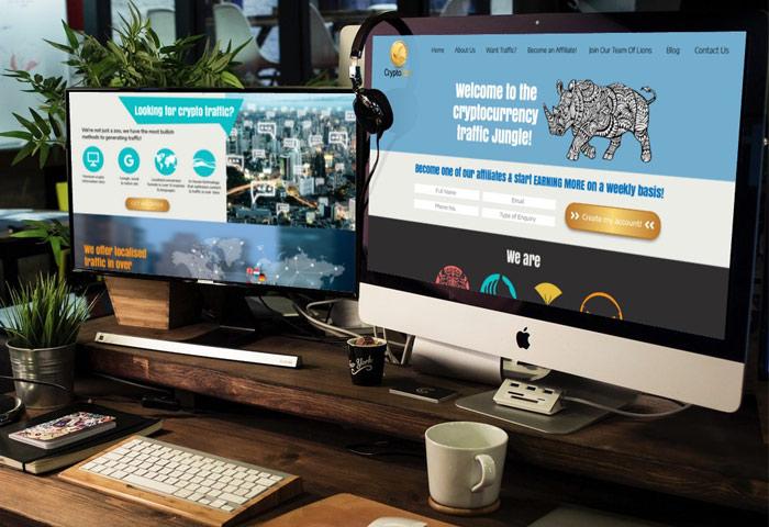 עיצוב ובניית אתר אינטרנט לחברת CryptoZoo
