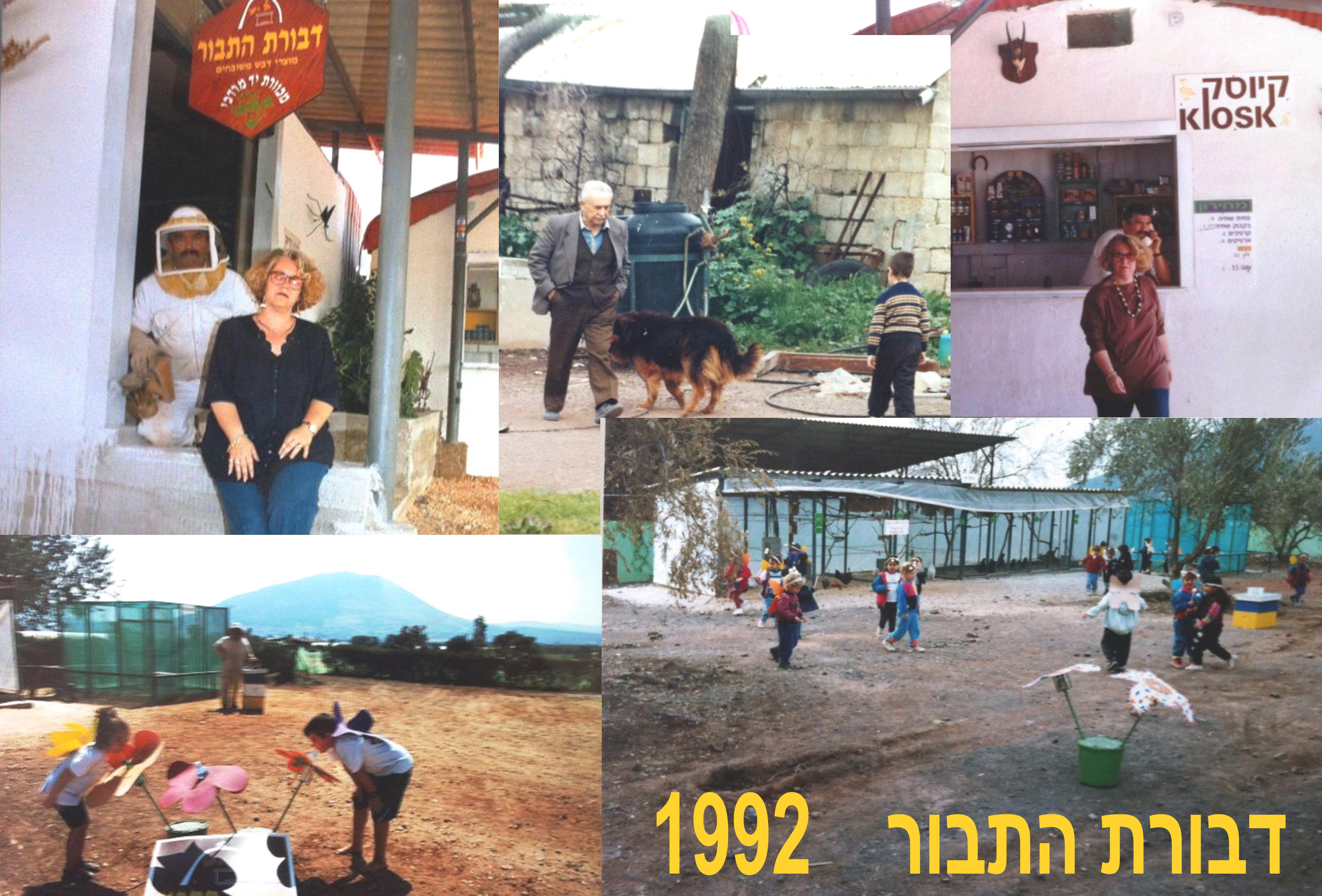דבורת התבור 1992