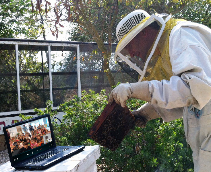 Skype virtual fieldtrip with a beekeeper