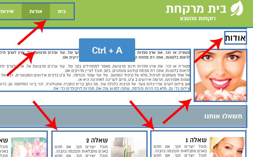 Ctrl+A - קיצור מקשים חדש לסימון כל הלאמנטים בעמוד