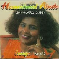 Hamelmal Abate - Irsagn