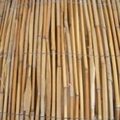 """גדר קנים גובה 1 מטר- אורך 5 מטר - רק 9.90 למ""""ר- חסר במלאי ."""