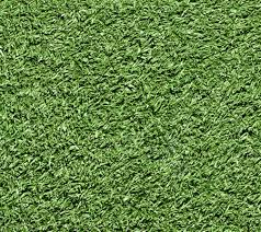"""דשא סינטטי מומלץ דגם הולי 25 מ""""מ"""
