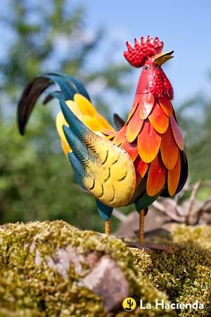 תרנגול מקרקר צבעוני 55281- חסר במלאי