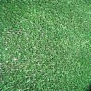 """דשא סינטטי לגינה לבד 10 מ""""מ"""