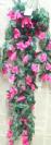 """גולש ורדים 80 ס""""מ"""