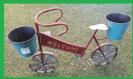 אופניים WELCOME