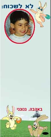 לוח ממו מגנטי עם תמונה והקדשה, דגם ארנבים