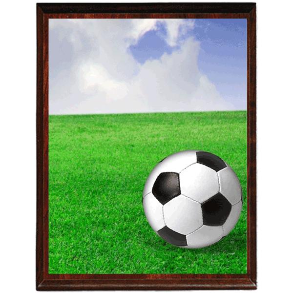 בסיס למגן הוקרה בכדורגל