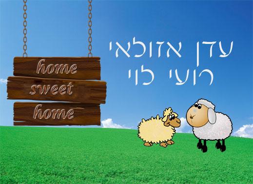 שלט צבעוני ממתכת לדלת, דגם כבשים