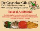 Natural Antibiotics Stone Kit!