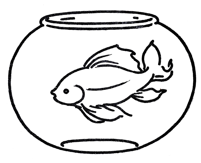 דף צביעה דג זהב