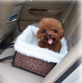 מושב לנסיעה לכלב