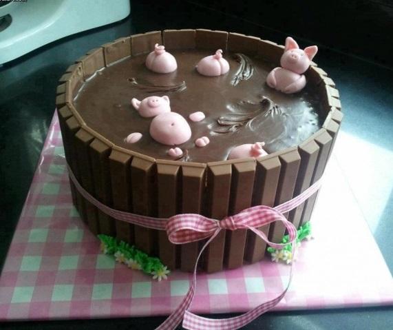 עוגת חזירים בבריכת בוץ