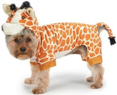 תחפושת כלב חיית ג'ונגל