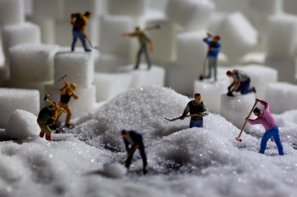 פועלים בסוכר
