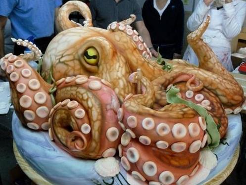 עוגת תמנון