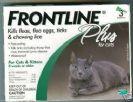 פרונטליין + חתול