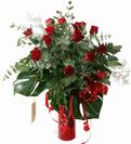 זר תריסר ורדים