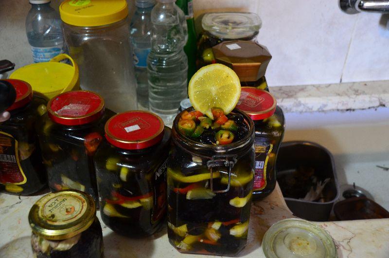 זית אירופי, זיתים שחורים במלח, רחלי עינב