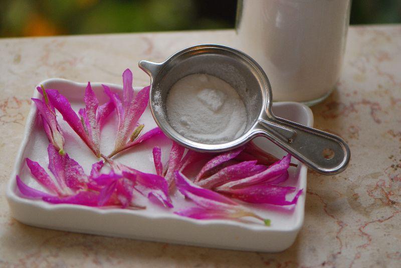 סיפן התבואה Gladiolus italicus, צמחי בר נאכלים, פר