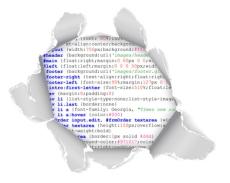 פלאש או HTML - בניית אתרים
