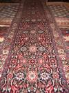 שטיח ביז'אר 290/64