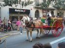 פסטיבל סנט מדיר - Festa de Sant Medir