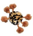 קונג עכביש עם קטניפ