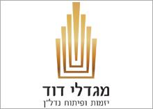 עיצוב לוגו יזמות ופיתוח נדלן