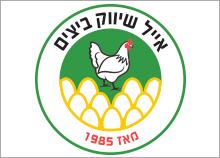 עיצוב לוגו אייל שיווק ביצים