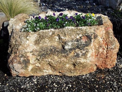 סלע מקומי חצוב כאדנית