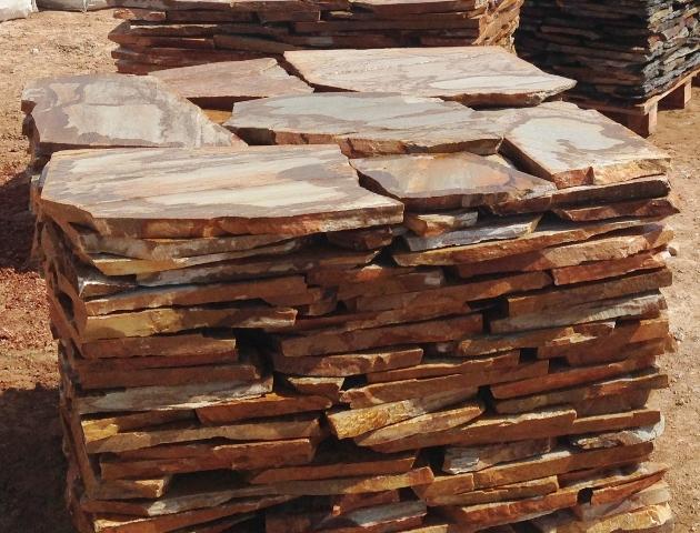 צפחה פראית בגווני עץ