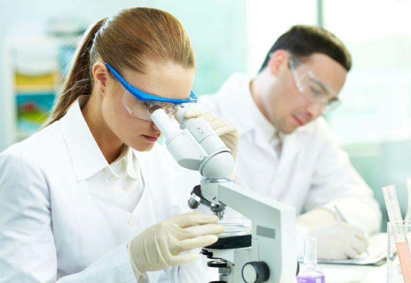 מחקר במעבדה