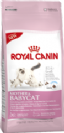 """3182550707329 מזון יבש לחתולים גורים 4 ק""""ג Royal Canin"""