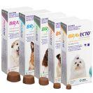 BRAVECTO כדור נגד פרעושים וקרציות בכל המשקלים לכלב