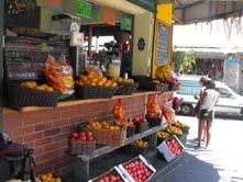 סיור טעימות בכרם ובשוק הכרמל