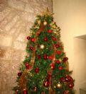 סיור ערב חג המולד בירושלים 24/12/2013 20:30
