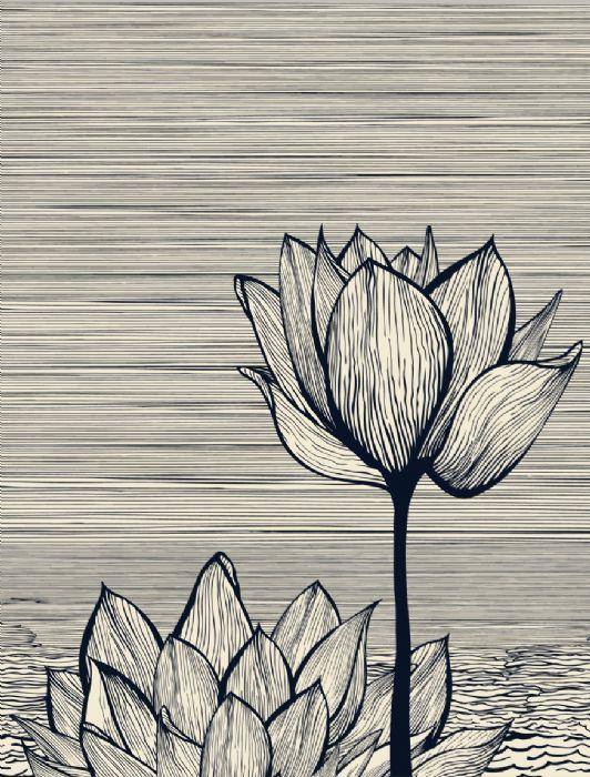 פרחים בשחור