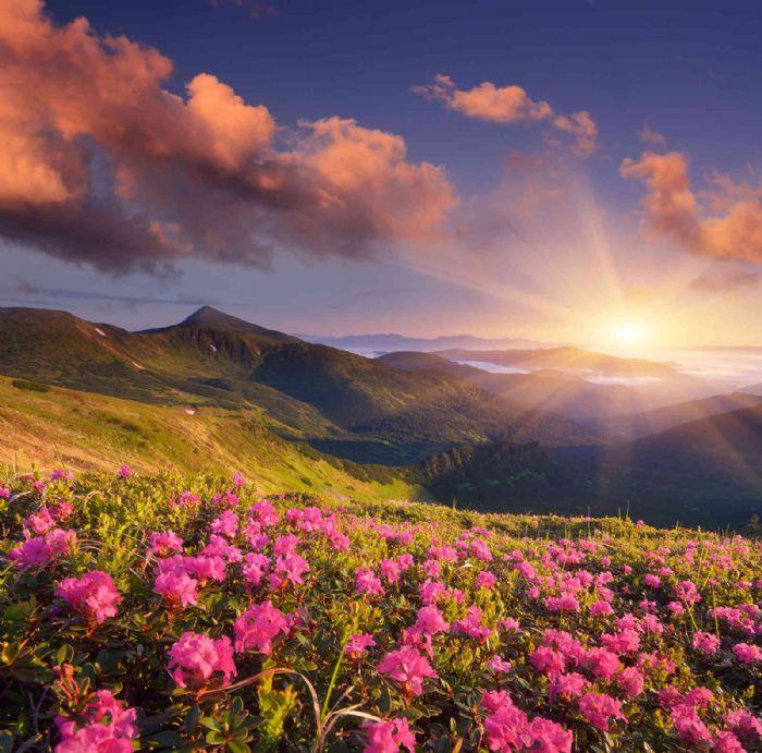 טפט ענק לקיר נוף הרים