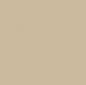 Tan color sample