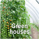 GBM -Green Houses in Cuba