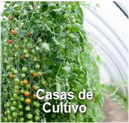 GBM - Casas de Cultivo