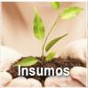 GBM - Insumos