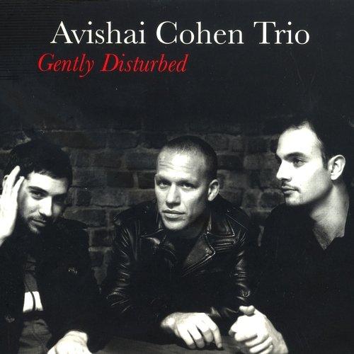 Avishai Cohen Trio Gently Disturbed