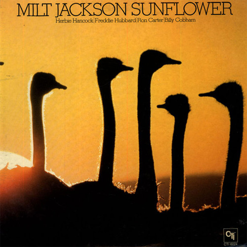 Milt Jackson Sunflower