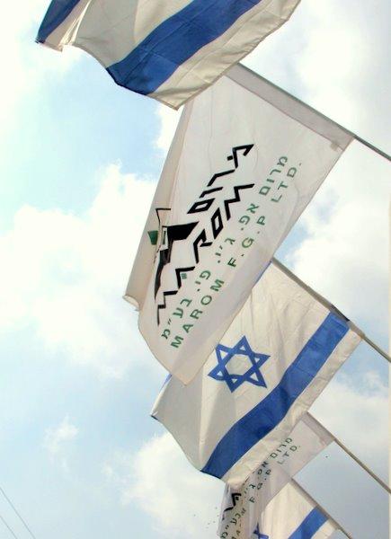 מכירת דגלים