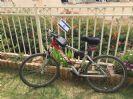 מעמד דיגלון לכידון האופניים