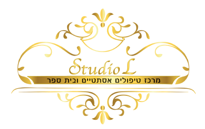 לוגו סטודיו L, קישור לדף הבית