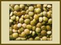 מג'דרה - תבשיל אורז עם עדשים